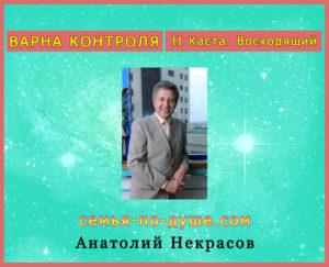 nerrasov