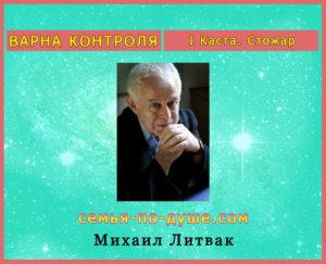Mihail-Litvak
