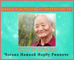 Chogjal-Namkaj-Norbu-Rinpoche