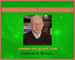 Semenov-Igor